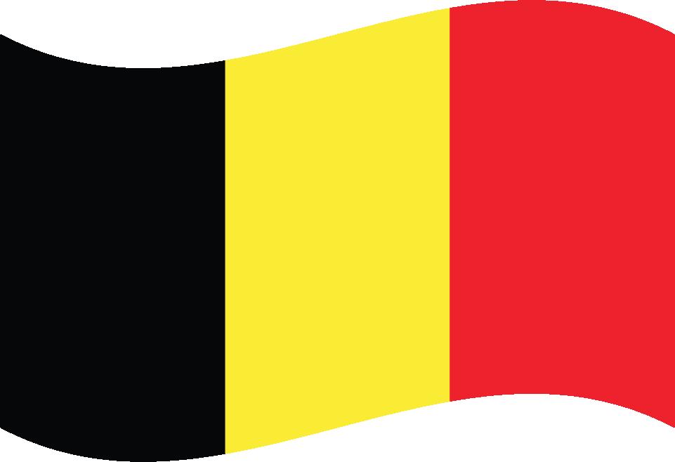 Flamandzki
